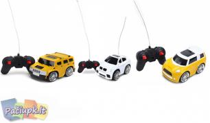Pulteliu valdoma žaislinė mašinėlė (galimi modelių pasirinkimai)