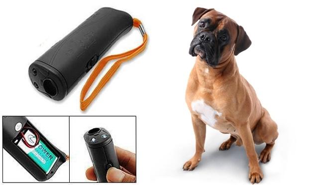 Protingas šuo! Šunų dresiravimo prietaisas
