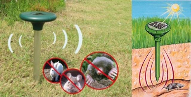 Saulės energija maitinama kurmių ir kitų graužikų baidyklė Jūsų sodui!