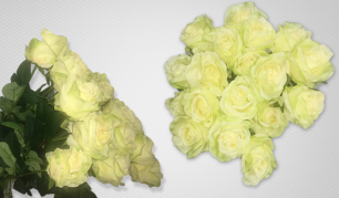 Puiki interjero detalė - Dirbtinės rožės