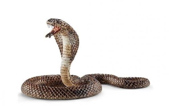 """""""Schleich"""" figūrėlė """"Kobra"""", 6,9 x 4,1 x 4,6 cm"""