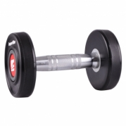 Hantelis inSPORTline PROFI 16 kg