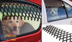 Apsauginės grotelės automobilio langui