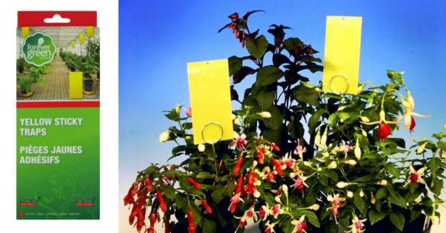 Lipnūs spąstai vabzdžiams geltoni (5 vnt.)